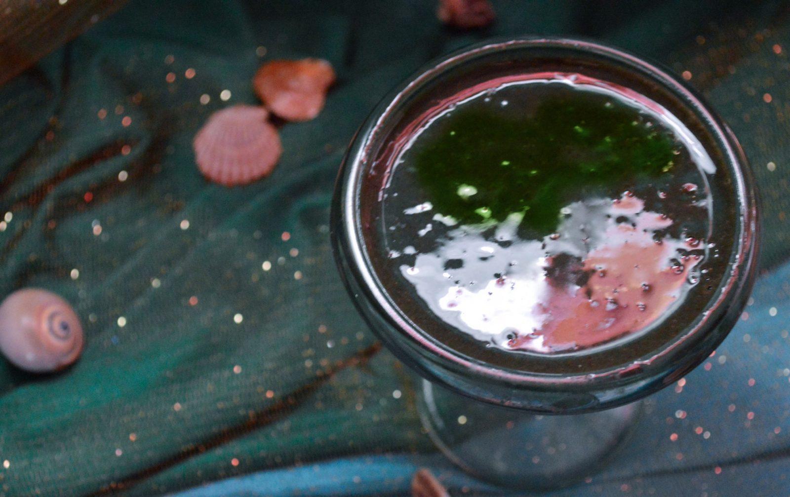 Mermaid's Elixir