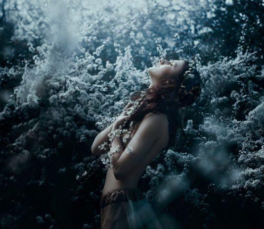 Cordelia, or the Price of Salt by SARA CLETO Photography by Bella Kotak