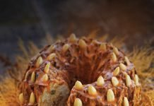 ORANGE JEWEL BARMBRACK