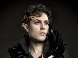 Ian Hencher Holly Black The Cruel Prince