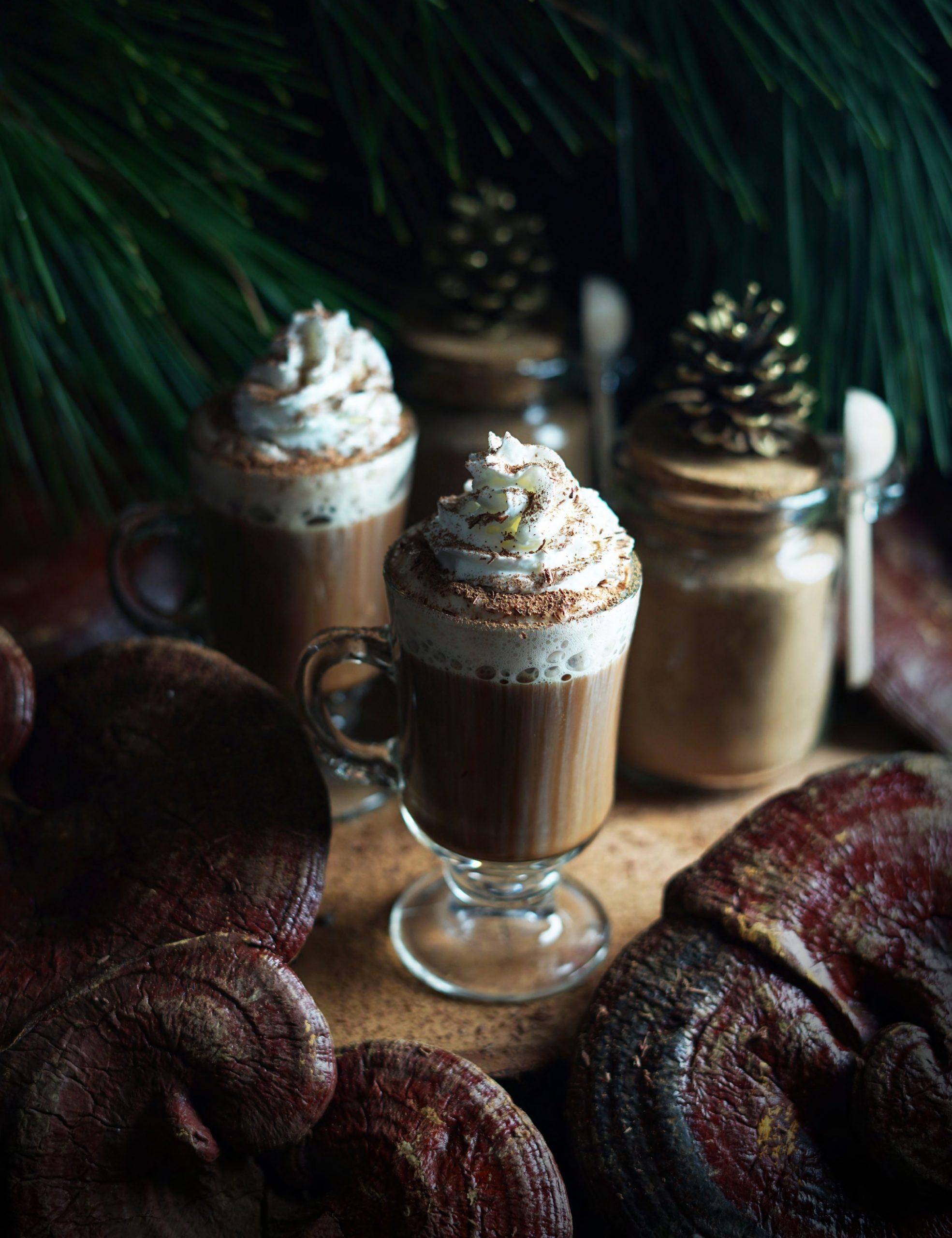 Medicinal Mushroom Cocoa by The Wo ndersmith