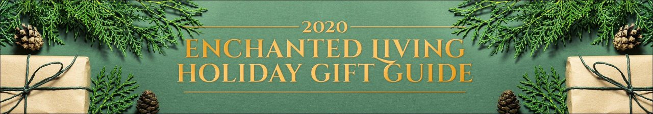enchanted_giftguide_headerbanner_2020-fix