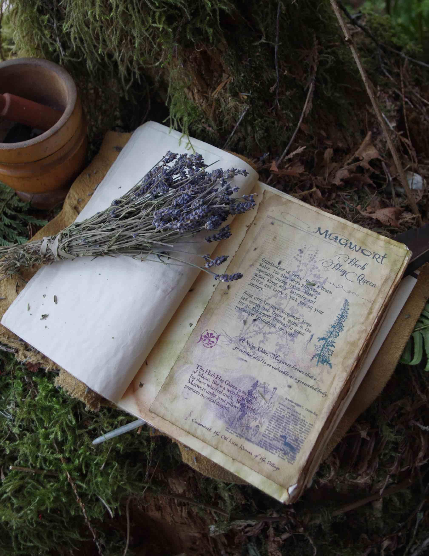 Enchanted Living Magazine Journal Lavender
