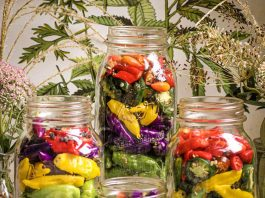REFRIGERATOR QUICK PICKLES from MUST LOVE HERBS - Lauren May