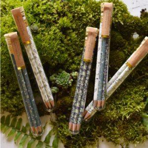 Solstice Pencil Terrariums - 2
